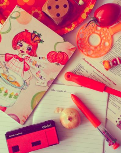 Cahier de recettes «mes p'tites soupes»